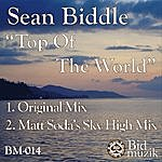 Sean Biddle Top Of The World (2-Track Single)