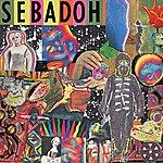 Sebadoh Smash Your Head On The Punk Rock