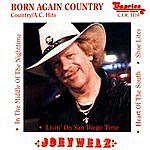 Joey Welz Born Again Country