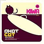 Kiwa Phat Cat/Disco Infection