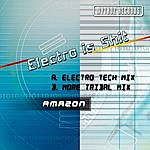 Amazon Electro Is Shit (2-Track Single)