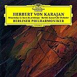Igor Stravinsky The Rite Of Spring/Concerto For Orchestra