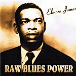 Elmore James Raw Blues Power