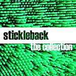Stickleback Collection