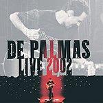 Gérald de Palmas Live 2002