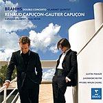 Johannes Brahms Double Concerto/Clarinet Quintet, Op.115