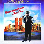 Barrington Levy Love The Life You Live