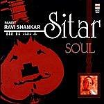 Ravi Shankar Sitar Soul