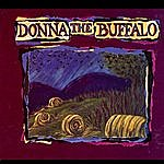 Donna The Buffalo The Red Tape