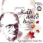 Gulzar Kab Aate Ho…Kya Aapko Inhi Ki Talash Thi?