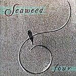 Seaweed Four