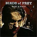 Birds Of Prey Sulfur And Semen
