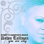 Dawn Tallman You Are Why: Bobby D'Ambrosio Mixes (2-Track Single)