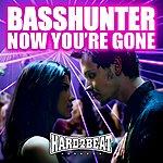 Basshunter Now You're Gone (Fonzerelli Remix 2-Track Single)