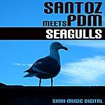 Santoz Seagulls (3-Track Maxi-Single)