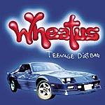 Wheatus Teenage Dirtbag (3-Track Maxi-Single)