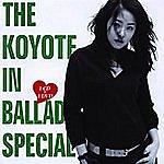 Koyote The Koyote In Ballade Special (Best Album 2000-2005)