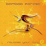 Bamboo Forest Release Your Mind