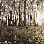 The Swallows Me With Trees Towering