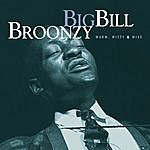 Big Bill Broonzy Mojo Workin' - Blues For The Next Generation: Warm, Witty & Wise