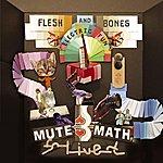 MUTEMATH Flesh And Bones Electric Fun