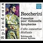 Anner Bylsma DHM Splendeurs: Concertos Pour Violoncello/Symphonies