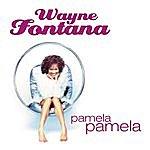 Wayne Fontana Pamela, Pamela