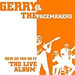 Gerry & The Pacemakers How Do You Do It: The Live Album