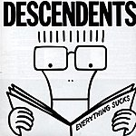 Descendents Everything Sucks