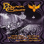 The Black Crowes Freak 'N' Roll...Into The Fog (Live)