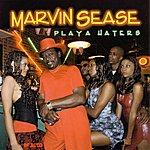 Marvin Sease Playa Haters