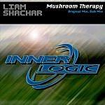 Liam Shachar Mushroom Therapy (2-Track Single)