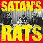 Satans Rats What A Bunch Of Rodents