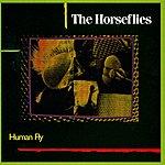 The Horseflies Human Fly