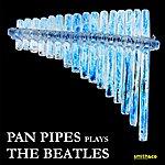 Inishkea Pan Pipes Play The Beatles