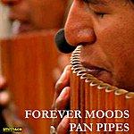 Inishkea Forever Moods - Pan Pipes