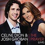 Celine Dion The Prayer (Live)