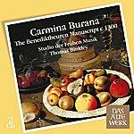 Thomas Binkley Carmina Burana: The Benediktbeuren Manuscript