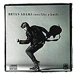 Bryan Adams Cuts Like A Knife