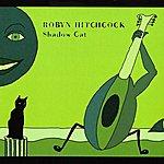 Robyn Hitchcock Shadow Cat