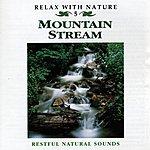 Natural Sounds Mountain Stream