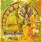 Ojos De Brujo Techari (Live)