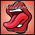 Wild Horses Rolling Stones Instrumental Renditions