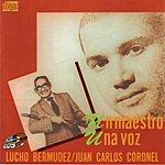 Lucho Bermúdez Un Maestro Una Voz, Vol.1