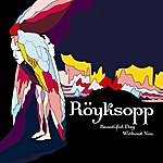 Röyksopp Beautiful Day Without You (3-Track Maxi-Single)
