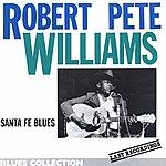 Robert Pete Williams Last Recordings