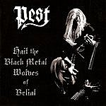 Pest Hail The Black Metal Wolves Of Belial