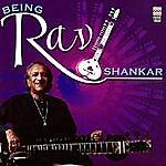 Ravi Shankar Being Ravi Shankar