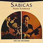 Sabicas Fiesta Flamenca