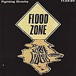 Fighting Gravity Live At The Flood Zone